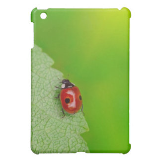 Sunburst above tiny ladybird climbing up a fresh cover for the iPad mini