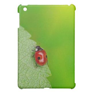 Sunburst above tiny ladybird climbing up a fresh cover for the iPad mini