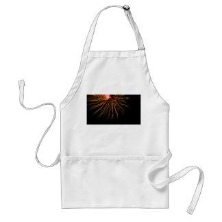Sunburst Fireworks Abstract Photography Art Adult Apron