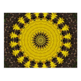 sunburst or sunflowe pattern postcard
