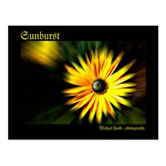 Sunburst Postcard