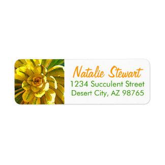Sunburst Succulent by Amy Vangsgard Label