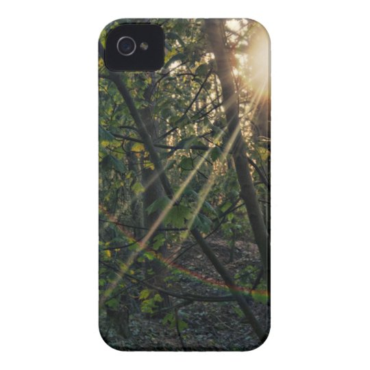 Sunburst through the trees iPhone 4 4s case
