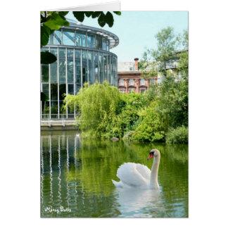 Sunderland - Mowbray Gardens Greeting Card