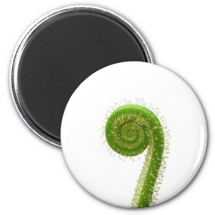 Sundew Frond 2 Inch Round Magnet