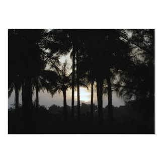 Sundown in a palm forest card