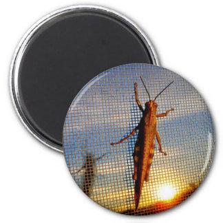 Sundown Magnet
