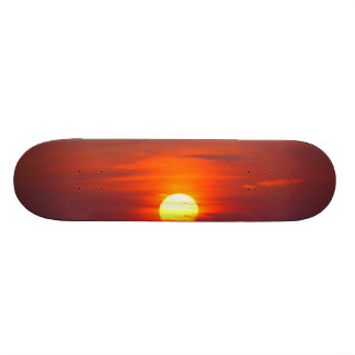 Sundowner Skateboard