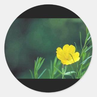 Sundrops Classic Round Sticker