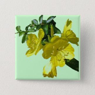 Sundrops Primrose Coordinating Items Button