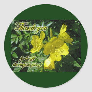 Sundrops Primrose Sticker Matches Thank You Card