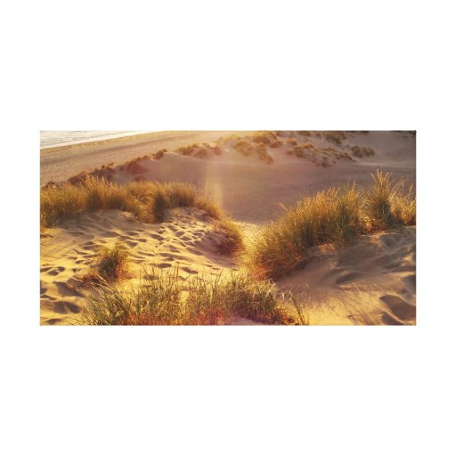 SunDunes Canvas Prints
