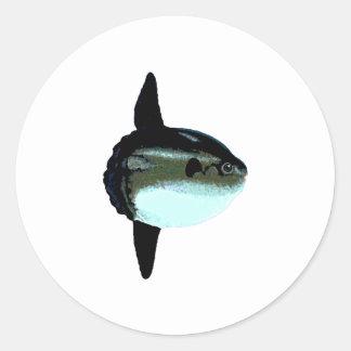 Sunfish de océano - Mola del Mola Pegatina