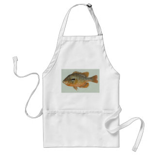 Sunfish de Redbreast - auritus del Lepomis Delantal