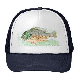 Sunfish Gorra