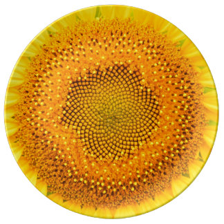 "Sunflower 10.75"" Decorative Porcelain Plate"