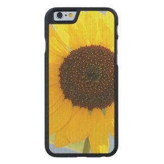 sunflower-11 funda de iPhone 6 carved® de arce
