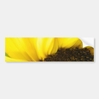 Sunflower 175 bumper sticker