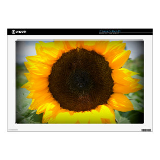 "Sunflower 17"" Laptop Decal"