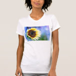 Sunflower_1aa Tees