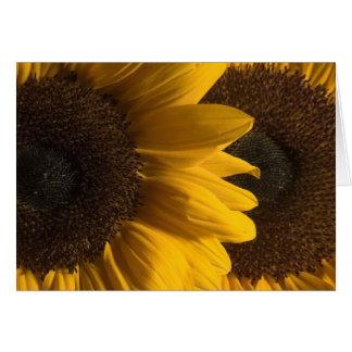 Sunflower 2 card