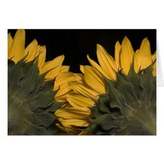 Sunflower 3 card