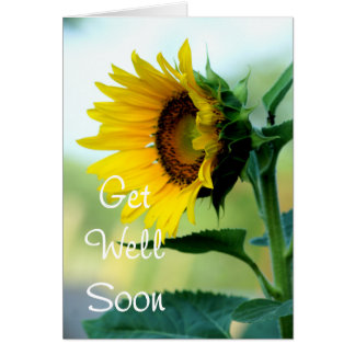 Sunflower 703 Get Well or any occasion Card