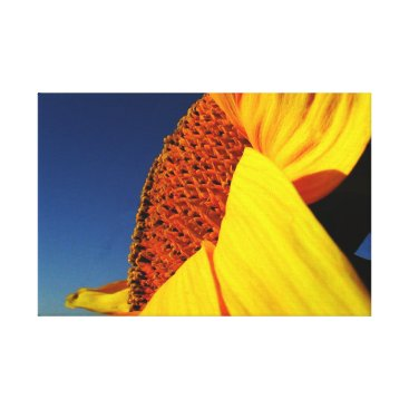 Art Themed SunFlower  77 by ArtisicVegas Charles Meade Canvas Print