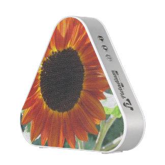 sunflower-78 altavoz