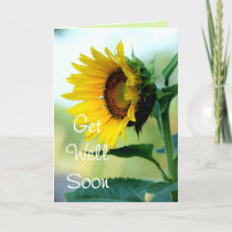 Sunflower 7 Get Well or any 03 Card