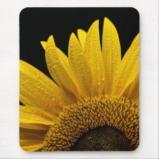 Sunflower after the rain mouse pad