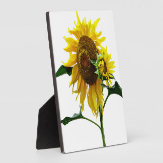 Sunflower And Baby Plaque