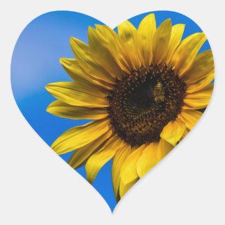 Sunflower and bee heart sticker