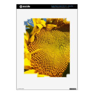 Sunflower and Bee iPad 3 Decals
