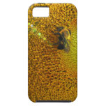 Sunflower and Bee iPhone 5 Cases