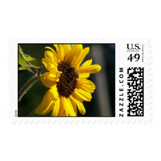 Sunflower And Bee Postage