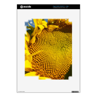 Sunflower and Bee Skins For iPad 2