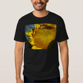 Sunflower and Bee T Shirt