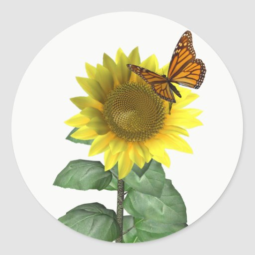 Sunflower and Butterfly Classic Round Sticker