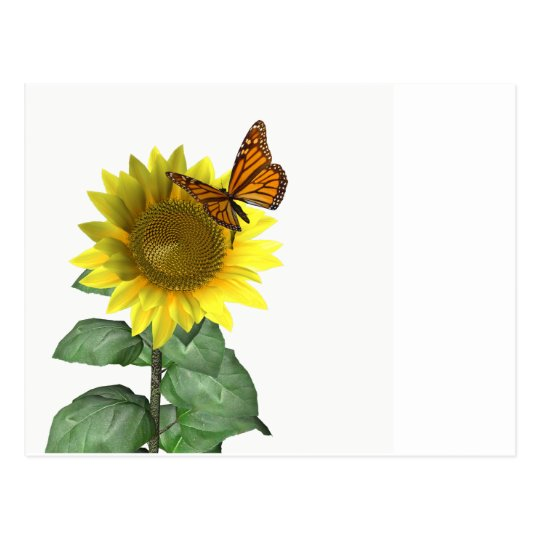 Sunflower and Butterfly Postcard