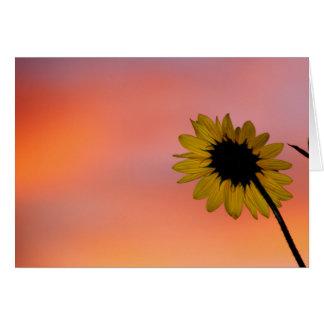 Sunflower and Dawn Sky Card