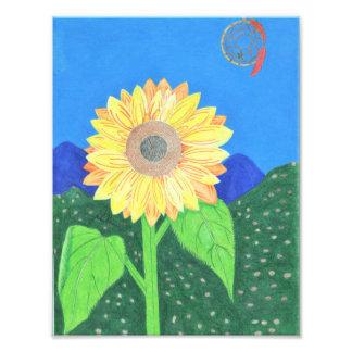 Sunflower And Dream Catcher by Julia Hanna Photo Print