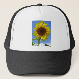 Sunflower and Honey Bee Trucker Hat