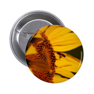 Sunflower and meaning button