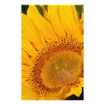 Sunflower and meaning customized stationery