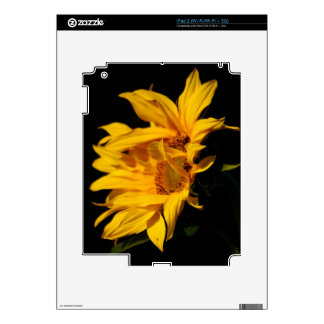 Sunflower and meaning decal for the iPad 2