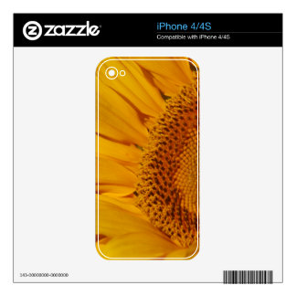 Sunflower and meaning decals for iPhone 4