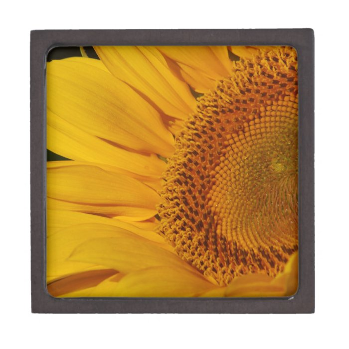 Sunflower and meaning keepsake box
