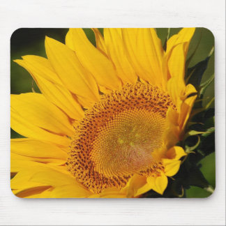 Sunflower and meaning mouse pad