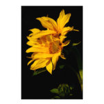 Sunflower and meaning personalized stationery